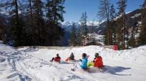 Nieve en la Sierra de Madrid - Esqui y trineos
