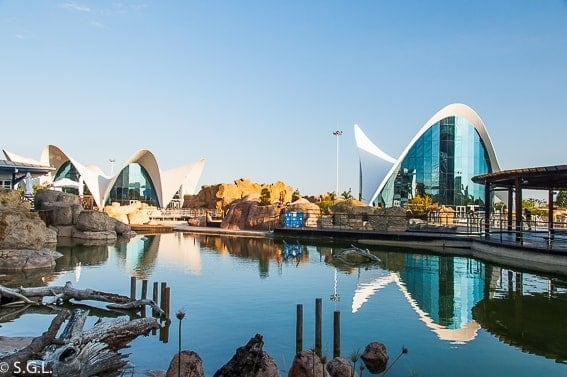 Qué Visitar en Valencia este Verano 2021 - Guía Travelodge