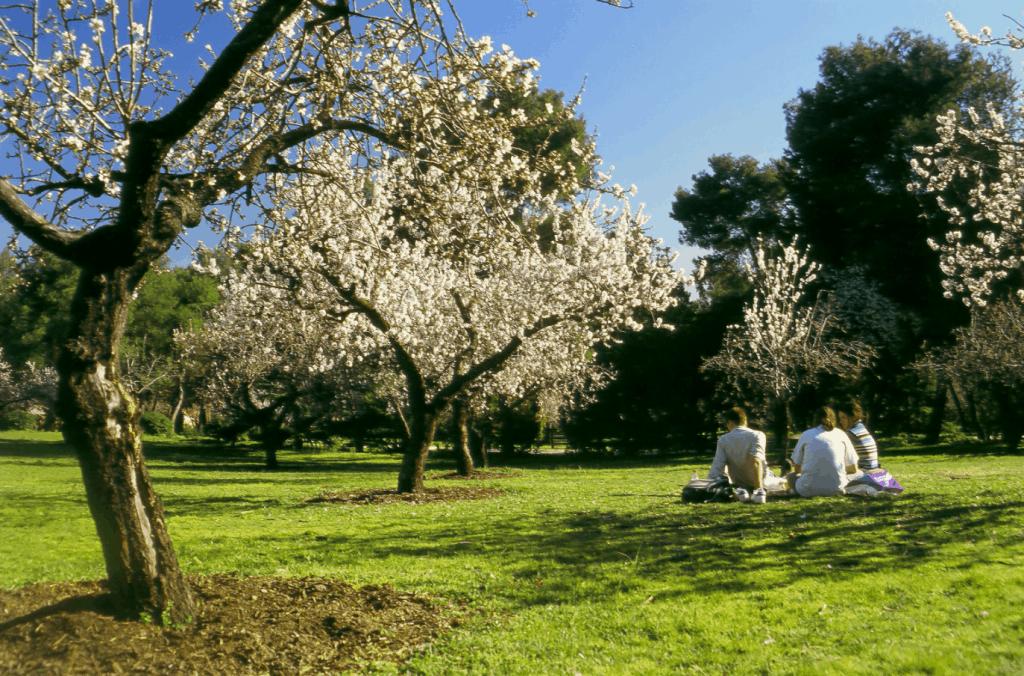 La quinta de los Molinos - Los 5 parques más románticos de Madrid
